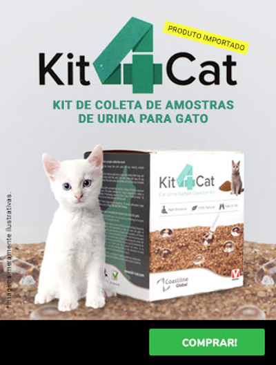 banner-kit4cat-mobile